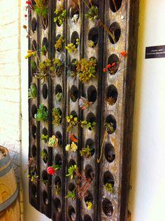 Repurposed riddling rack at Oreana Winery.