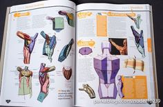 The Complete Guide: How to Draw and Paint Anatomy
