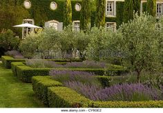 French estate with Italianate garden design of organic regional plants by Dominique Lafourcade - Stock Image