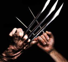 Logan and Wolverine Marvel Wolverine, Marvel Comics, Hq Marvel, Logan Wolverine, Marvel Heroes, Wolverine Meme, Wolverine Tattoo, Mundo Marvel, Marvel Characters