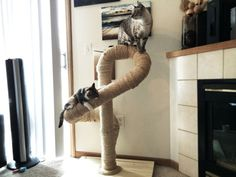 Sisal Cat Tree by Catastrophic Creations on Etsy. (Also wall-mounted climbing poles and posts.)