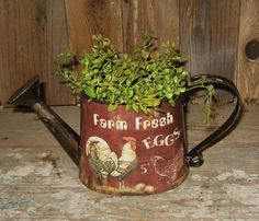Rooster Chicken Watering Can Egg Flower Plant Pail Farmhouse Primitive Decor
