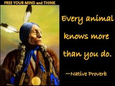 Every animal knows more than you do.  -Native Proverb