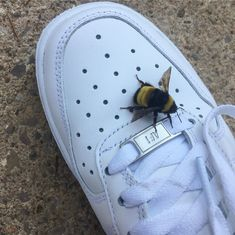 VSCO - Bee friends | aynsleyrae The Dark Artifices, Cute Bee, Save The Bees, Cute Creatures, Miraculous Ladybug, Cute Pictures, Bugs, Cute Animals, Yellow