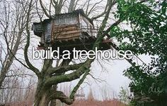 I've always wanted a good treehouse.