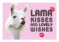 Verjaardagskaart vrouw - lama-kisses-and-wishes Free Happy Birthday Cards, Belated Birthday Card, Happy Birthday Quotes, Happy Birthday Wishes, Today Is Your Birthday, Set A Reminder, Hugs, Celebrations, Big Hugs