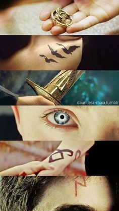 THG, Divergent, Percy Jackson, The Host, The Mortal Instruments/The Infernal Devices, Harry Potter