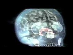 Dr. Persinger's God Helmet - #Topic5