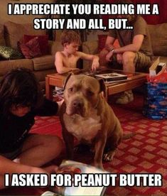 Enjoy funny animal pics of the day Wackyy picdump If you are an animal lover and looking for animal humor, then you like these funny animal pics and memes of the day. Funny Animal Photos, Funny Animal Memes, Dog Memes, Cute Funny Animals, Funny Cute, Funny Shit, Funny Dogs, Funny Pictures, Funny Memes