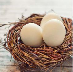 Plante farvede æg - Sådan gør du