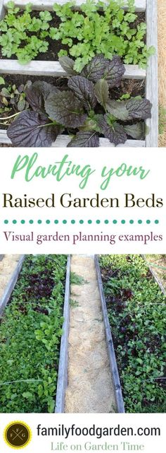 5 Fabulous Ideas For Landscaping With Rocks   Pinterest   Landscaping,  Gardens And Landscaping Ideas