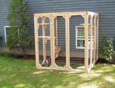 Outdoor cat run Have to build one of these someday - 25 Lovely Outdoor Cat Enclosure Diy Concept Outside Cat Enclosure, Diy Cat Enclosure, Outdoor Cat Run, Outdoor Sheds, Outdoor Play, Cat Habitat, Cat Pen, Cats Outside, Cat Cages