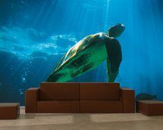 Fotomural adhesivo de tortuga marina - https://vinilos.info/producto/fotomural-adhesivo-de-tortuga-marina/ Entrega en 48 horas Imagina tener un acuario en casa, gracias a este fotomural lo conseguirás.     #HabitaciónInfantil, #HabitaciónJuvenil, #Oficina   #decoracion