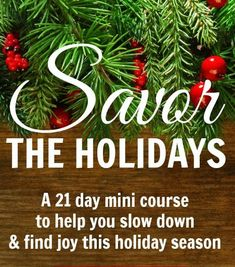 21 Days of Savoring the Holidays - can't wait to do this!  I have a feeling it's going to make a big difference in the stress level of the holidays :):