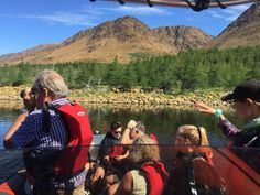 Tablelands Boat Tour   Wild Gros Morne