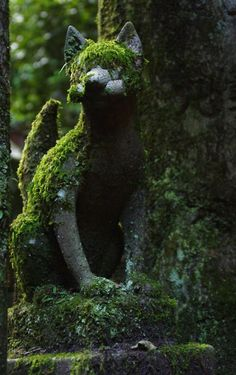 Moss Covered Cat Statue In The Garden : Grow Moss In Garden Statues To some people, moss covered garden statues provides an antique appearance. Here are several ways to grow moss in the garden statues. Solas Dragon Age, Dragon Age Inquisition, Cat Garden, Garden Art, Japan Garden, Elf Rogue, Growing Moss, Covered Garden, Cat Statue