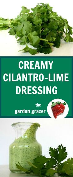 I could eat this with a spoon! Reader-favorite creamy cilantro-lime dressing. Awesome on southwestern salads!! #vegan #dressing #healthy