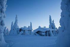 Wilderness hut. ❄