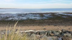 Low tide at Raritan Bay Waterfront Park in South Amboy NJ