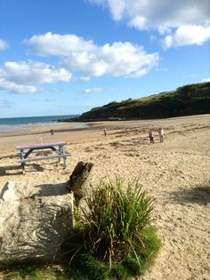 Maenporth beach, Falmouth, Cornwall.