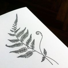 Fern. Available. Эскиз свободен. #dashatattooer #tattoo #tattooart #ferntattoo…