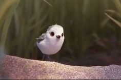 "Pixar's Newest Short Film ""Piper"" Is Absolutely Adorable"