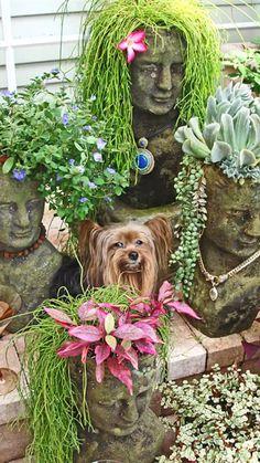 Head Planters, Garden Planters, Balcony Garden, Garden Gnomes, Garden Whimsy, Herb Garden, Yard Art, My Secret Garden, Cacti And Succulents