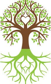 1000 Images About Tree Of Life Levensboom On Pinterest