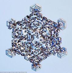 Snowflake under a microscope