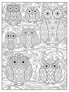 Owls on Branches Coloring Page by Thaneeya