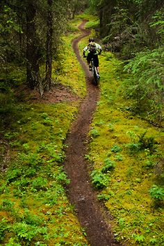 Go on a mountain bike expedition with a best friend :)