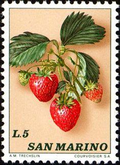 Dettaglio francobollo - catalogo completo dei francobolli italiani