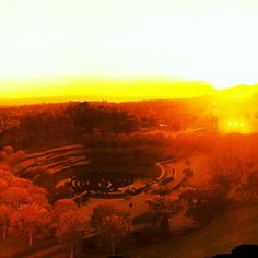 The Getty Center's Garden at Sunset, LA, CA, US