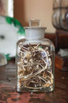 jar of wishes.