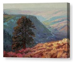 Lone Pine, country landscape canvas art print from Steve Henderson Collections. Standing strong and firm, a single tree commands a view of the valley that is unparalleled -- and unblocked by other trees. The lone tree is a reminder to us as that sometimes, our path is to stand alone, strong and firm, unsurrounded by a forest of voices that tell us how to think or live. It's not easy being that lone pine, but it's an element of freedom. #lonepine #tree #country #hill #outside #canvas #art