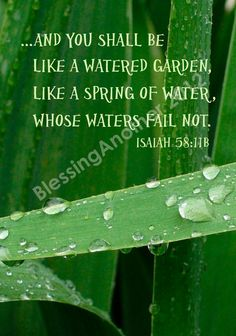 Isaiah 58:11 ~ And you shall be like a watered garden, like a spring of water, whose waters fail not.