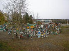 Alaska Highway, Lake Signs, Dolores Park