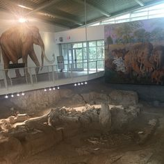 Need a new place to explore? Check out the Waco Mammoth National Monument in Waco TX! One of the newest National Park Service monuments this awesome site explores a nursery herd of Columbian mammoths. #outside #outdoors #ourplanet #optoutside #nature #naturelover #naturelovers #explore #environment #adventure #history #weekend #igtexas #publicland #fun by texaslandconservancy #instashare #sharingiscaring #love #theirsuccessisoursuccess