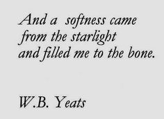 """""""And a softness came from the starlight and filled me to the bone"""" -W.B.Yeats"""