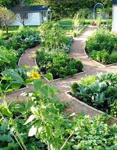 Summer #gardening #tips to help your garden thrive