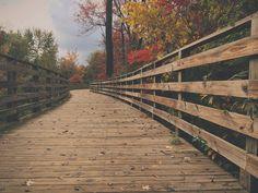 Check out Autumn Bridge by Sam Daniels on Creative Market