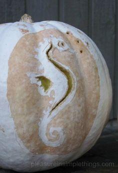 seahorse jack-o-lantern