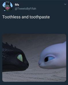 How To Train Your Dragon Toothless & Toothpaste Night fury & Light Fury Stupid Funny, Funny Cute, The Funny, Hilarious, Disney Memes, Disney Pixar, Punk Disney, Disney Facts, Disney Animation