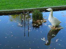 Esculturas de Medina Bird, Animals, Spain, Turismo, Monuments, Sculptures, Animaux, Birds, Animal