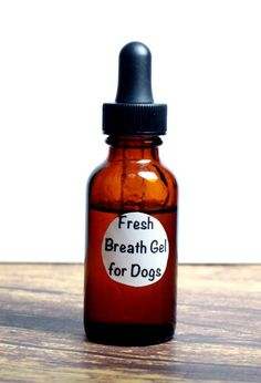 This DIY natural fresh breath gel for dogs really works at freshening breath and helping to prevent tarter on dog's teeth. Plus it's completely natural!