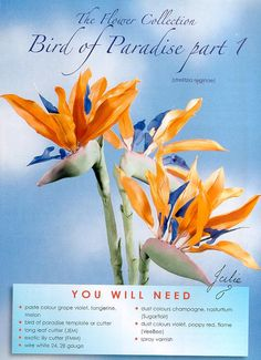 {A brief tutorial for gumpaste Bird of Paradise flowers featured on Sugarcraft.com}