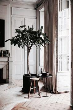 425 best home goods images in 2019 rh pinterest com
