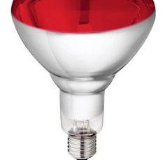 Philips – Lampe infrarouge 150w vis 8433: Lampe à infrarouge pour une utilisation universelle Vous pouvez l'utiliser pour le chauffage de:…