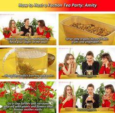 Amity Party