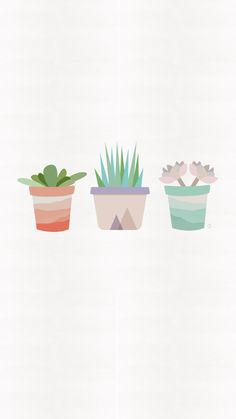 succulent-iphone-wallpaper-clementine-creative.jpg 1,242×2,208 pixels